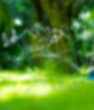 Manguera de jardín de riego