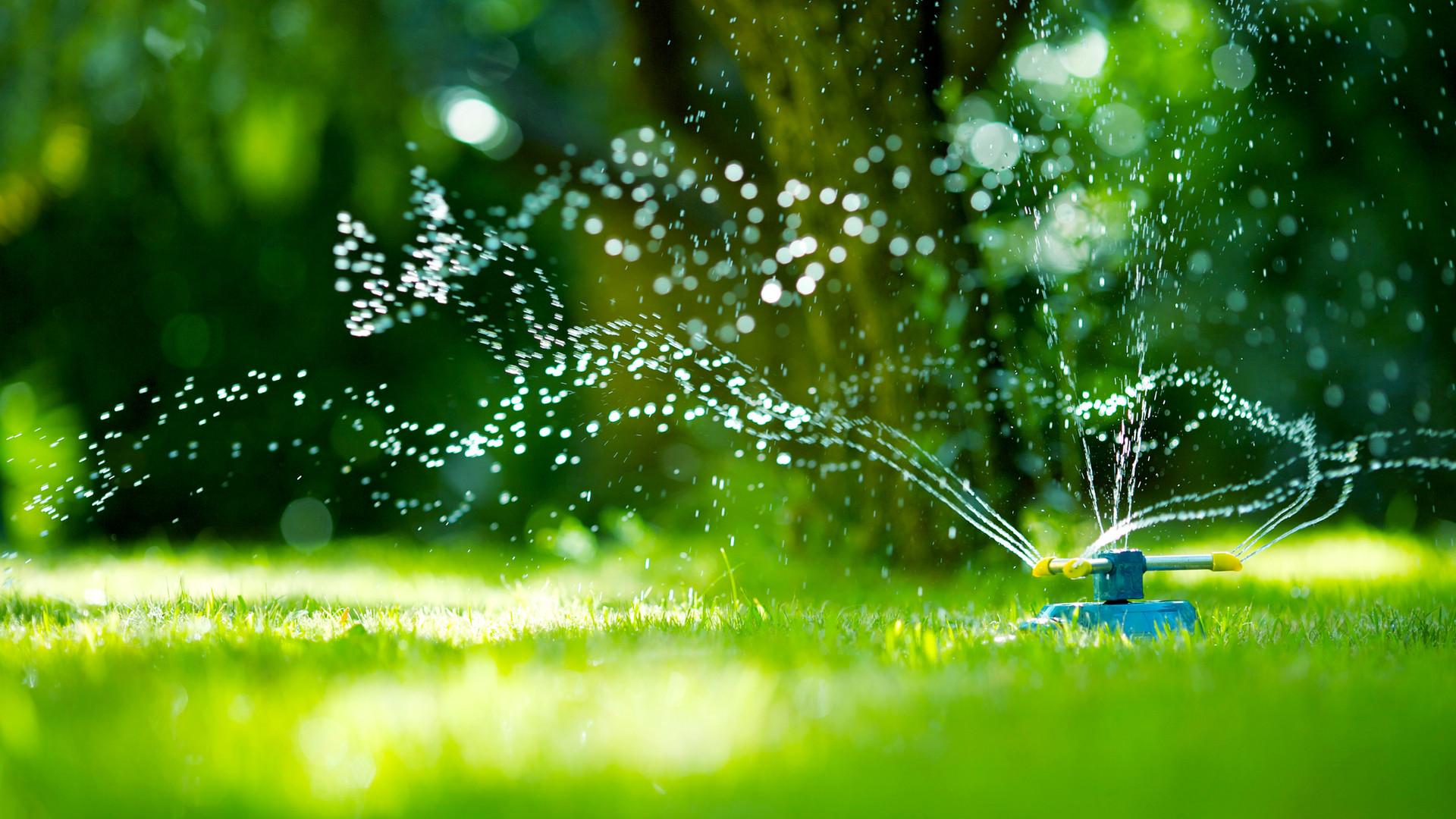 Bahçe Hortum Yağmurlama