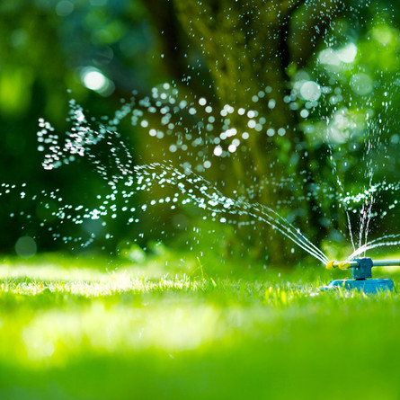 Saint-Lazare bans watering of lawns and other outdoor use of potable water indefinitely