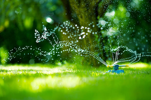 sprinkler in grass with water spraying and nurturing growth like you can get through mckenziecounseling.org