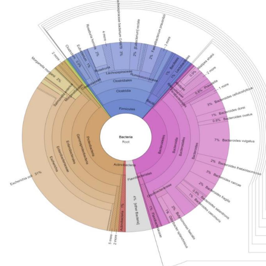 Interpretación Test Microbiota Xenogene