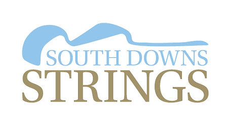 SDS_Logo_WhiteBG.png