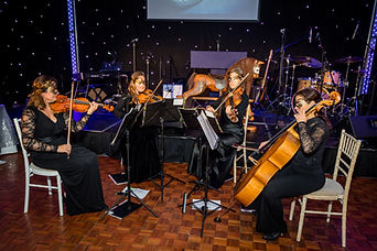 South Downs String Quartet playing for a charity ball and corporate event