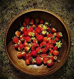 Strawberries 15.jpg