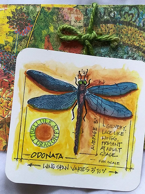 Dragonfly postcard w/ envelope