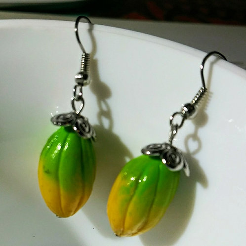 Earrings, cacso pods
