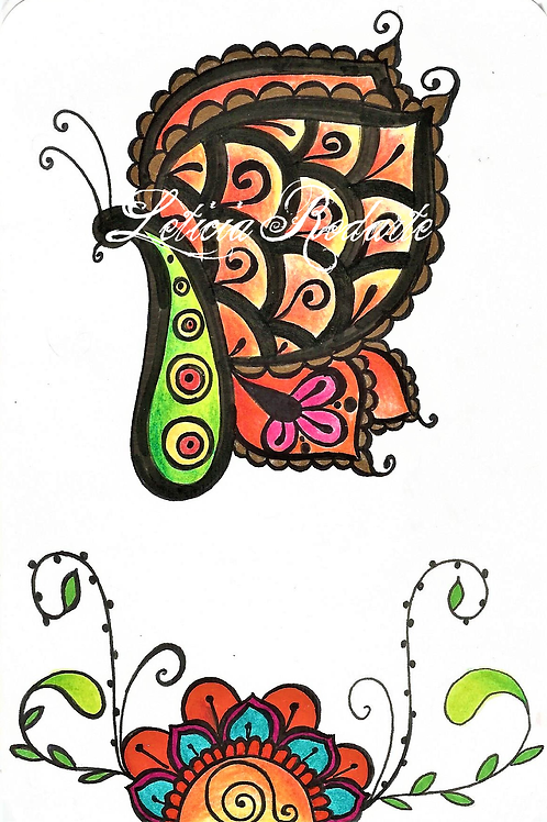 Pasley butterfly
