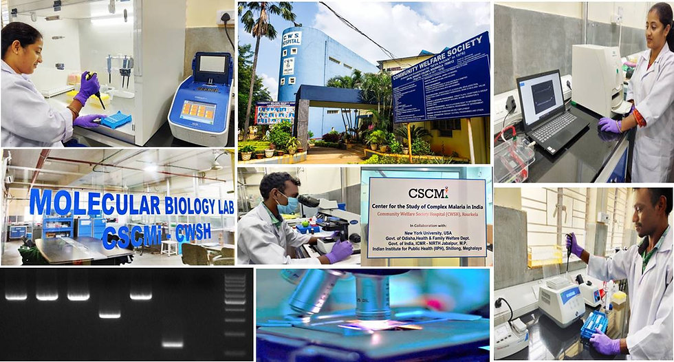 Molecular Biology Lab CSCMi