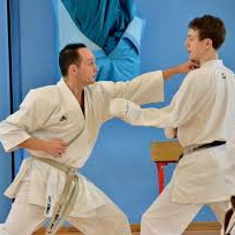 Northern Region Kumite Development Course