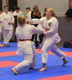 AMA Karate 2020 (8).JPG