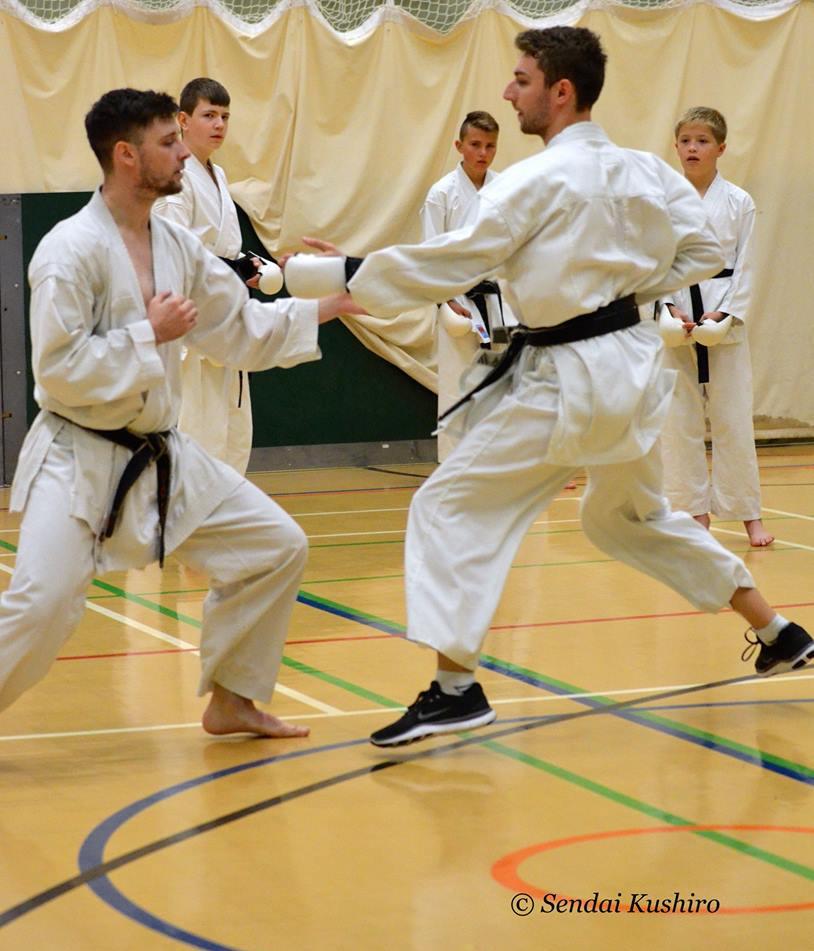 Advanced Kata and Kumite Course 4.jpg