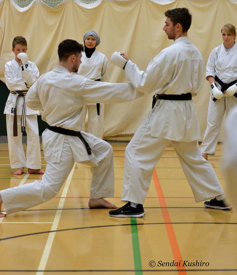 Advanced Kata and Kumite Course 18.jpg