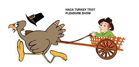 TURKEY TROT PICTURE.jpeg