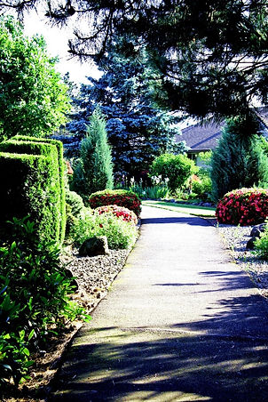 Walkway through the gardens