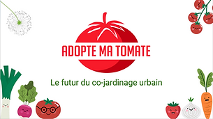 Dossier de presse Adopte ma tomate.png