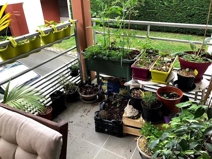 Terrasse végétalisée avec des pots de fleurs et bacs de légumes.jpg