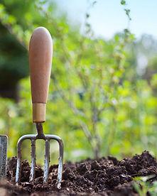 clean-garden-tools.jpg