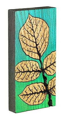 Ash Leaf on Ash