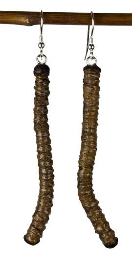 long rocky mountain twig earrings.jpg