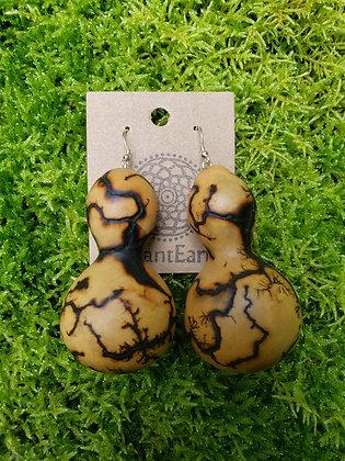 Lichtenberg Mini Gourds
