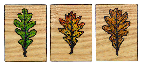 Oak Leaf Set 2