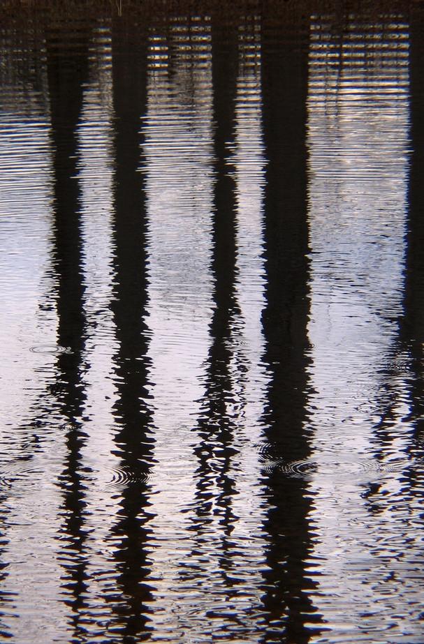 2006_01_30 (9)_edited.jpg