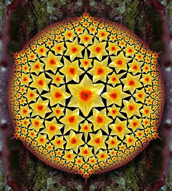 Circle Limit - Daffodil