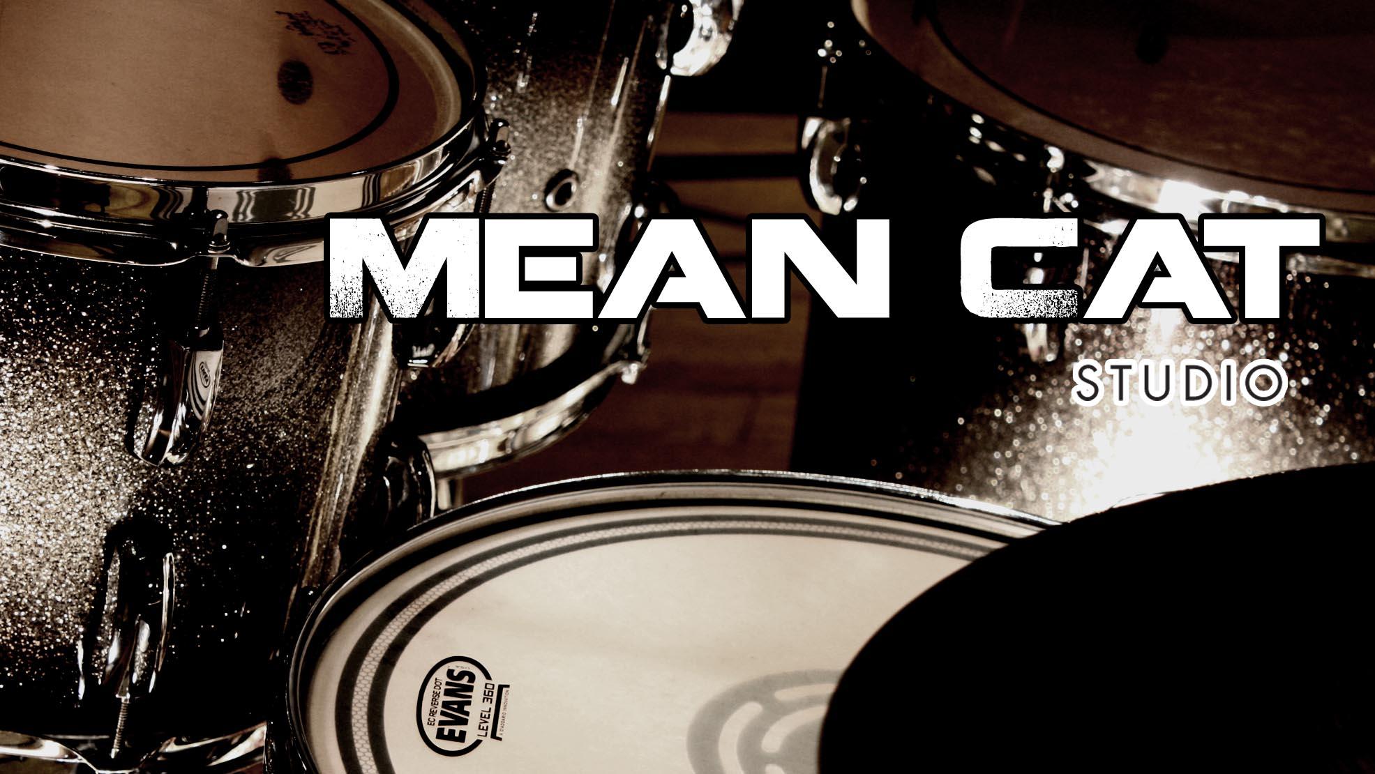 Mean Cat Studio