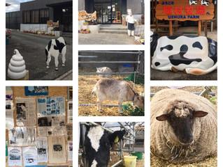 奈良 最古の植村牧場
