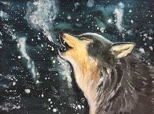 water-colour painting of a wolf in a winter night