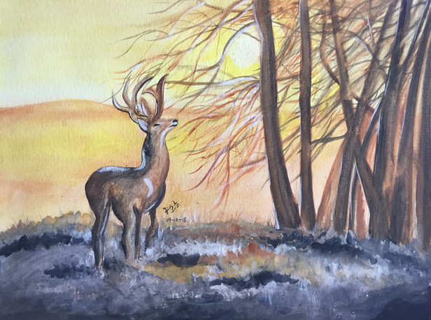 water-colour painting of an elk in fall