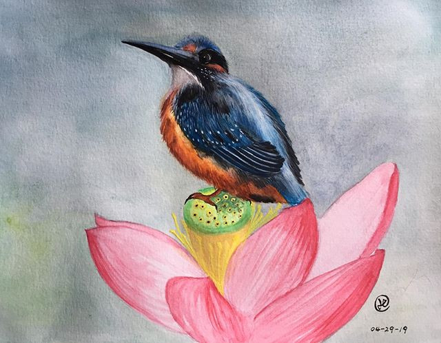 water-colour painting of a king fisher bird on lotus