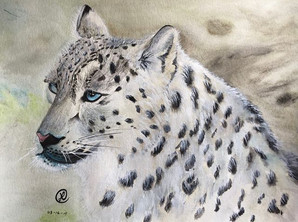 water-colour painting of a snow leopard.jp
