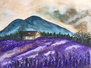 water-colour painting of lavender field