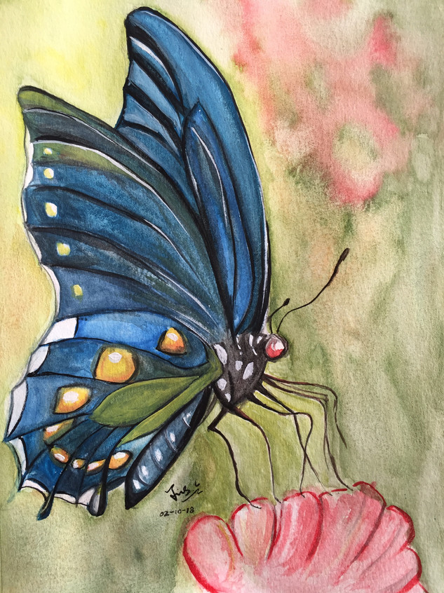 water-colour painting of a blue butterfly on flower