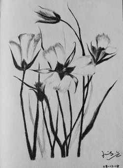 charcoal drawing of flowers