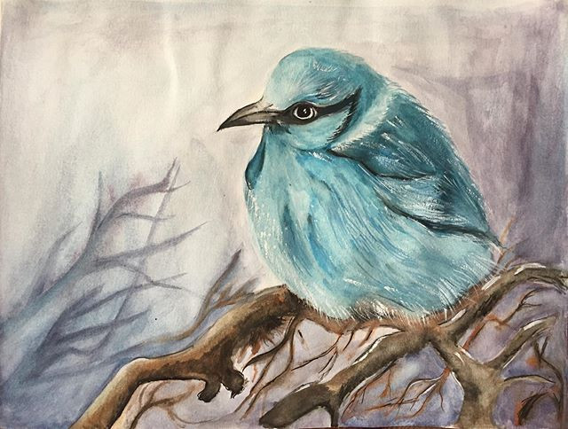 water-colour paining of a blue bird in w