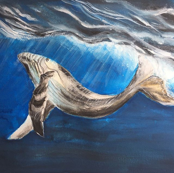 water-colour painting of a whale