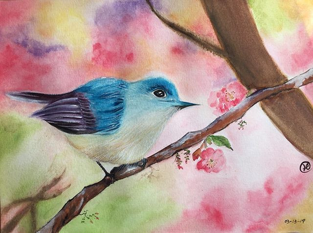water-colour painting of a blue bird in cherry blossom tree