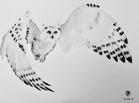 water-colour painting of a snowy owl