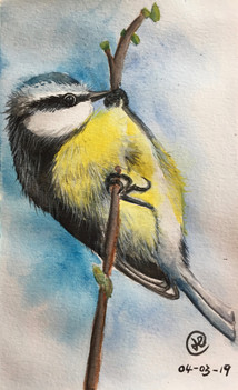 water-colour painting of a yellow bird