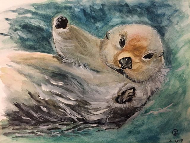 water-colour of a baby sea otter.jpg