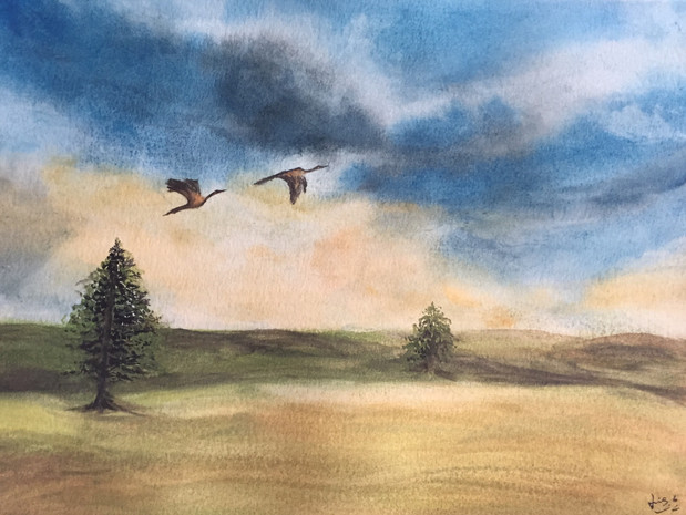 water-colour painting of geese flying on grassland