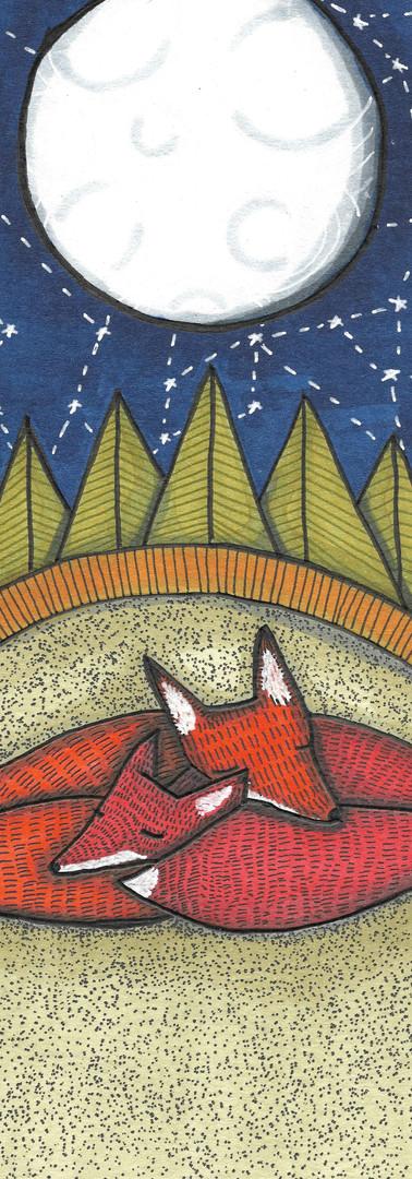 fox den small.jpg