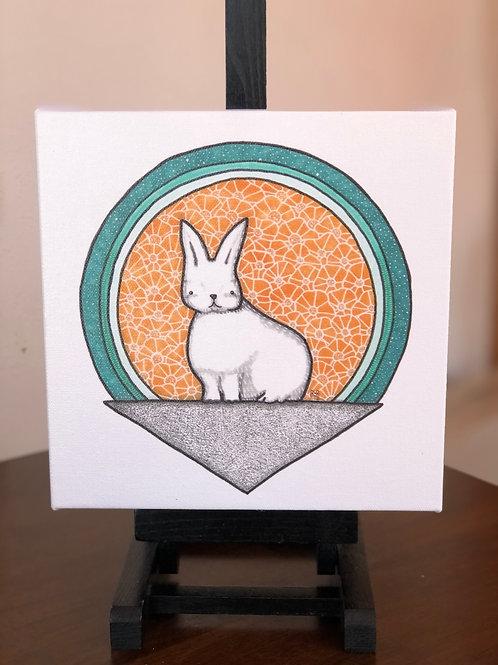 "Snowshoe Hare Wild Scoops 8x8"" Canvas Print"
