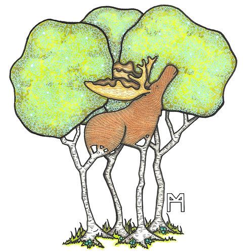 Moose Birch