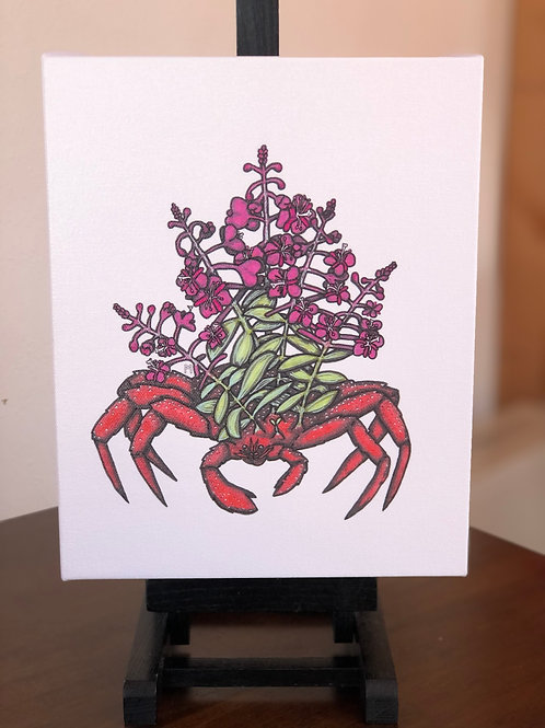 """Fireweed King Crab Wild Scoops 8x10"""" Canvas Print"""