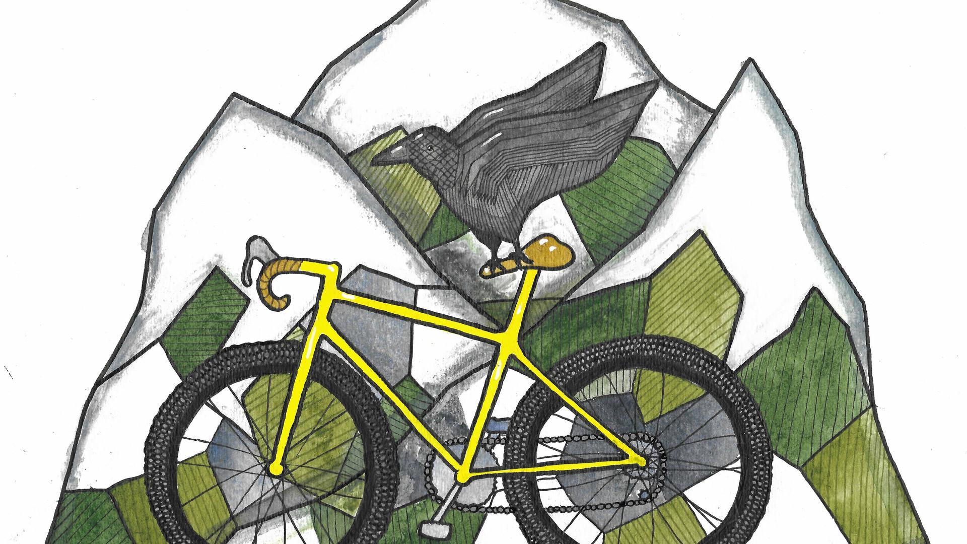 Mountain Bike Flight