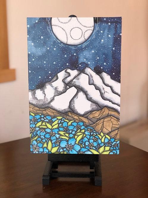 "Denali Night Wild Scoops 8x12"" Canvas Print"
