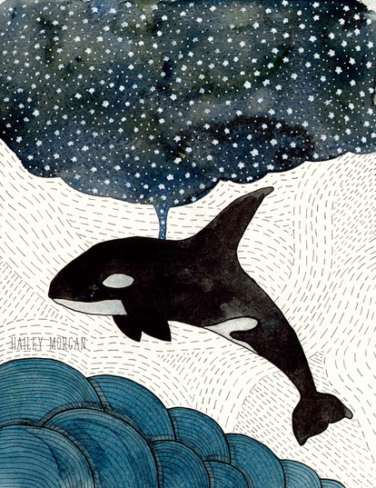 Night of the Orca